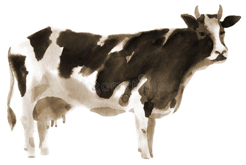 Απεικόνιση Watercolor μιας αγελάδας ελεύθερη απεικόνιση δικαιώματος