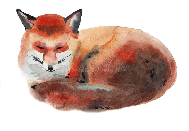 Απεικόνιση Watercolor μιας αλεπούς διανυσματική απεικόνιση