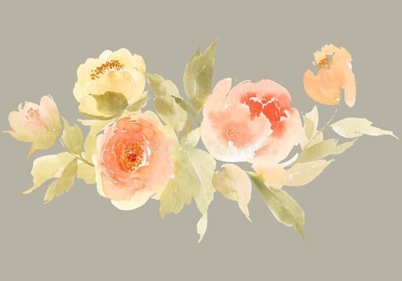 Απεικόνιση watercolor λουλουδιών διανυσματική απεικόνιση