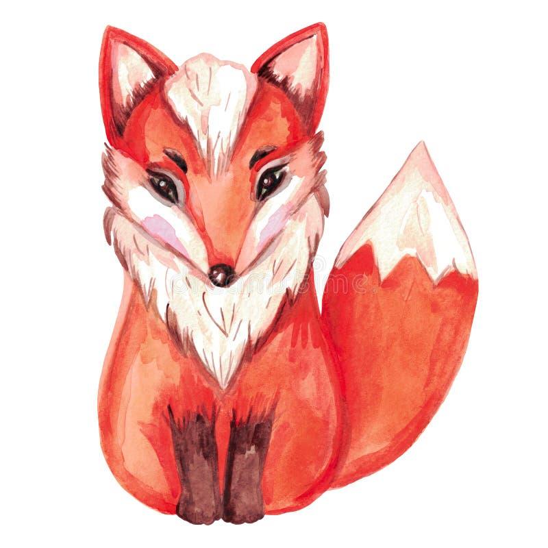 Απεικόνιση Watercolor της κόκκινης αλεπούς απομονωμένο στο λευκό χρωματισμένο χέρι ζώο υποβάθρου απεικόνιση αποθεμάτων