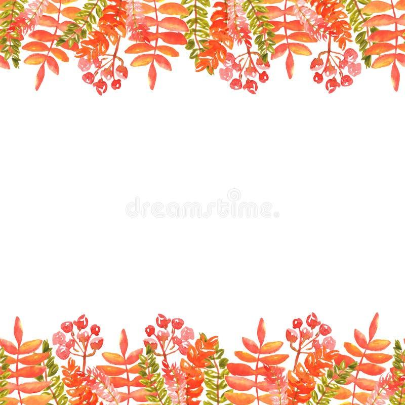 Απεικόνιση Watercolor των ακρών των φύλλων φθινοπώρου και των κλαδάκι των κόκκινων πορτοκαλιών σκιών σορβιών άνευ ραφής πλαίσιο στοκ φωτογραφία