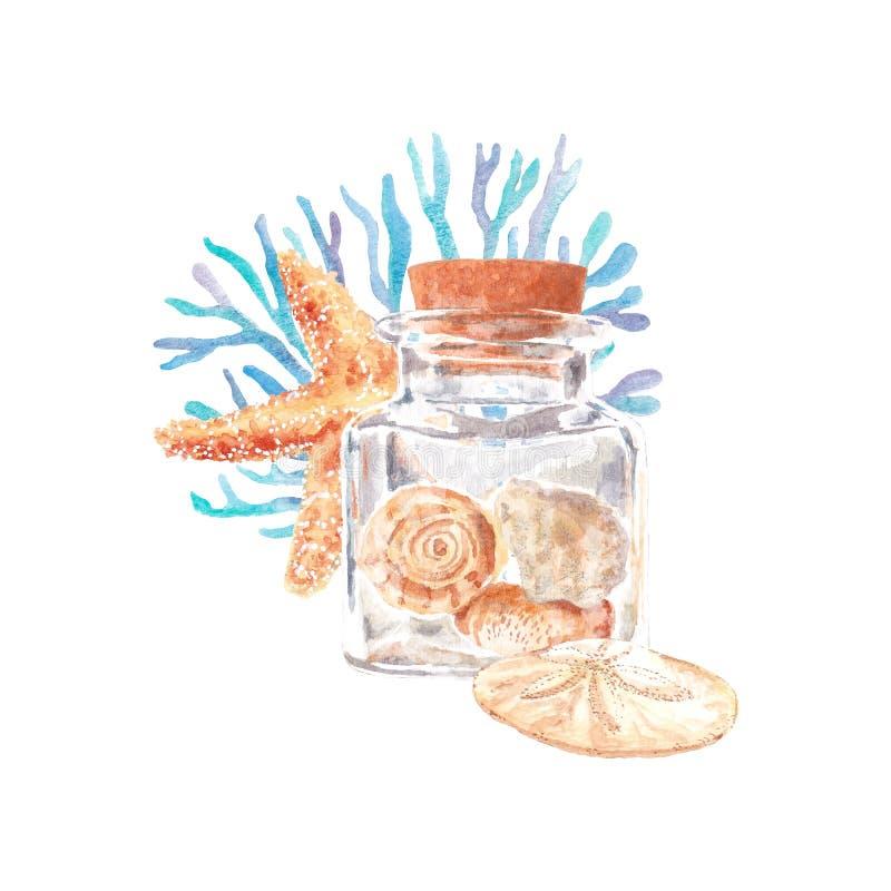 Απεικόνιση Watercolor των θαλασσινών κοχυλιών και του αστερία με το φύκι ελεύθερη απεικόνιση δικαιώματος