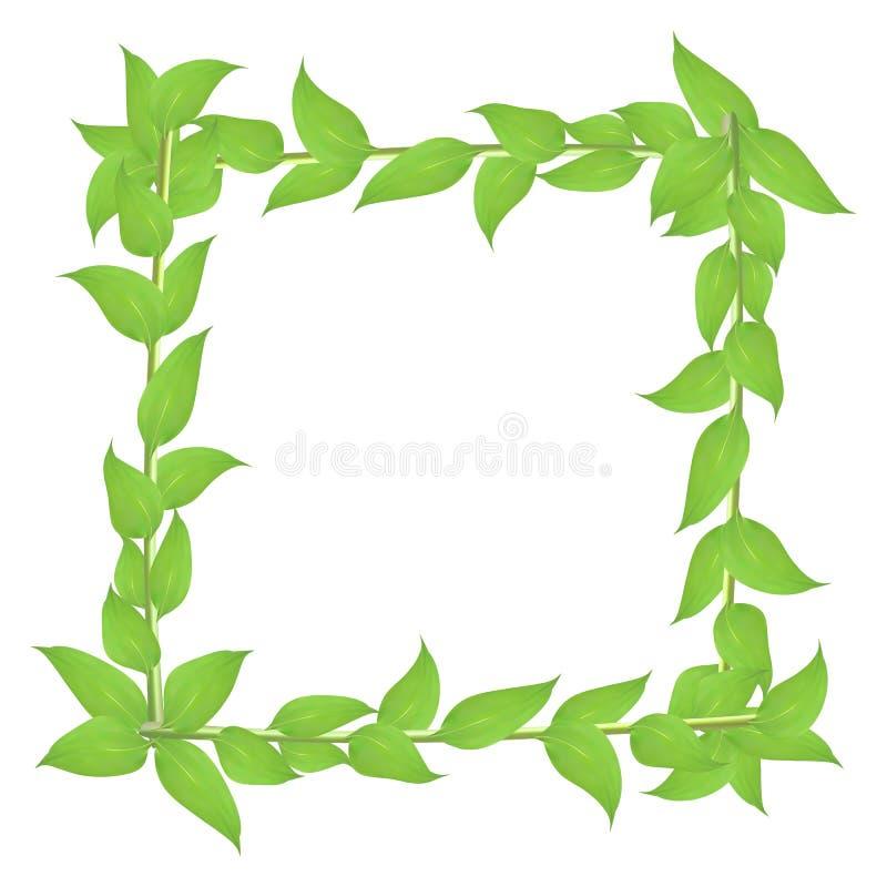 Αποβαλλόμενο πλαίσιο με τους μίσχους και τα πράσινα φύλλα ελεύθερη απεικόνιση δικαιώματος