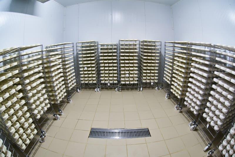 Αποθήκη εμπορευμάτων εργοστασίων τυριών με τα ράφια του προϊόντος στοκ φωτογραφία με δικαίωμα ελεύθερης χρήσης