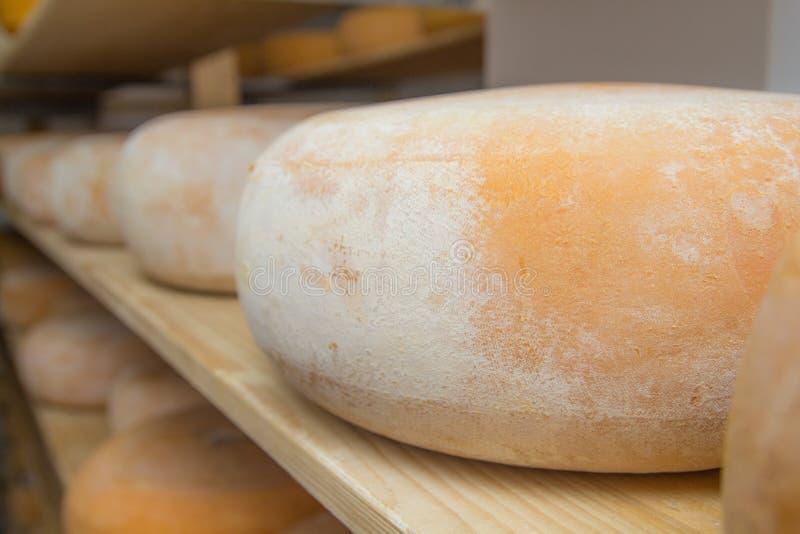 Αποθήκη εμπορευμάτων εργοστασίων τυριών στοκ εικόνες