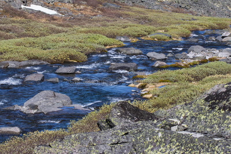 Αποκαλυμμένος ποταμός ρευμάτων στην κόλα χερσονήσων στοκ εικόνα με δικαίωμα ελεύθερης χρήσης