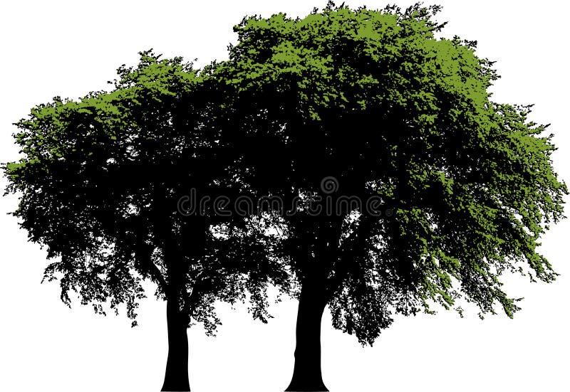 απομονωμένα δέντρα ελεύθερη απεικόνιση δικαιώματος