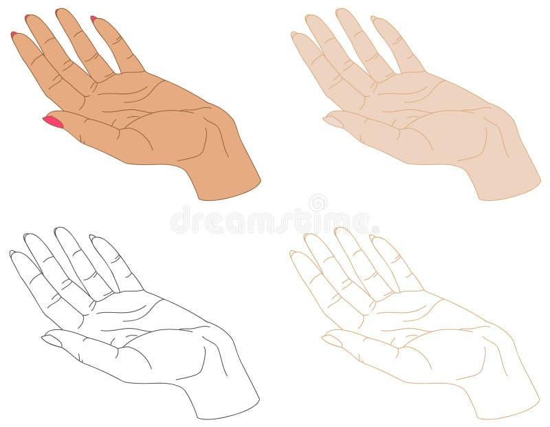 Απομονωμένα θηλυκά σχέδια χεριών ελεύθερη απεικόνιση δικαιώματος