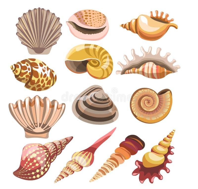 Απομονωμένα διάνυσμα εικονίδια κοχυλιών ή θαλασσινών κοχυλιών απεικόνιση αποθεμάτων
