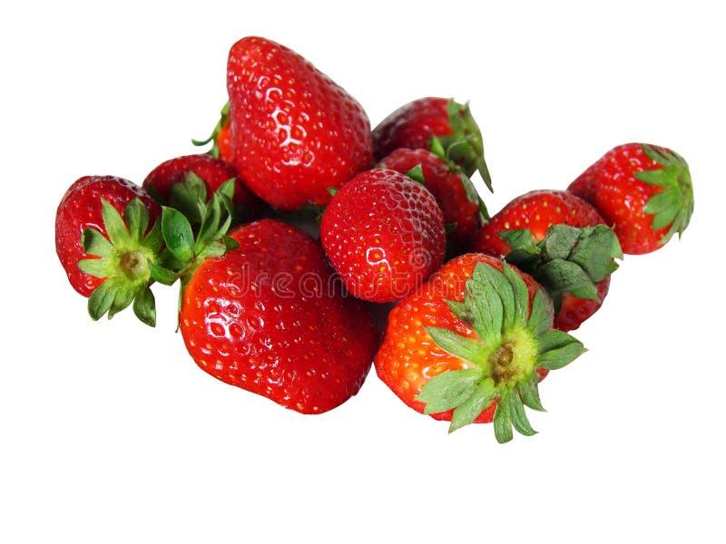 απομονωμένες φράουλες στοκ εικόνες