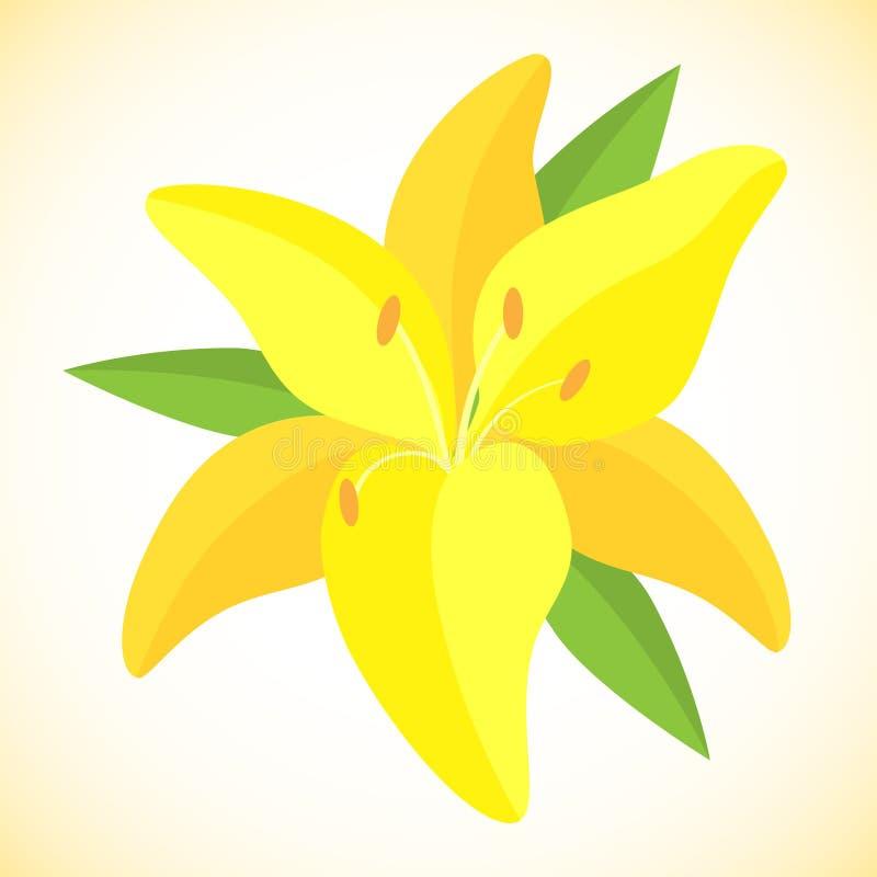 Απομονωμένη διανυσματική απεικόνιση Κίτρινο λουλούδι κρίνων τιγρών στοκ εικόνες με δικαίωμα ελεύθερης χρήσης