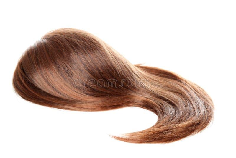 απομονωμένη περούκα στοκ εικόνα