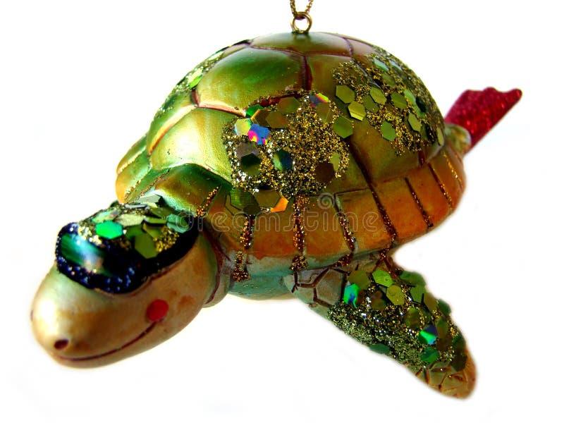 απομονωμένη χελώνα θάλασ&sigma στοκ φωτογραφίες