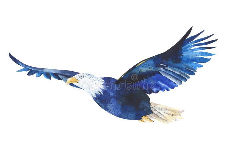 Απομονωμένη Watercolor απεικόνιση ενός αετού πουλιών στο άσπρο backg διανυσματική απεικόνιση