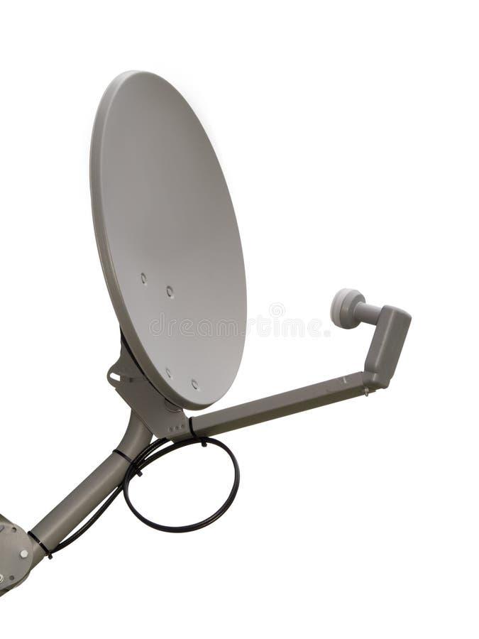 απομονωμένος πιάτο δορυ&ph στοκ εικόνα με δικαίωμα ελεύθερης χρήσης