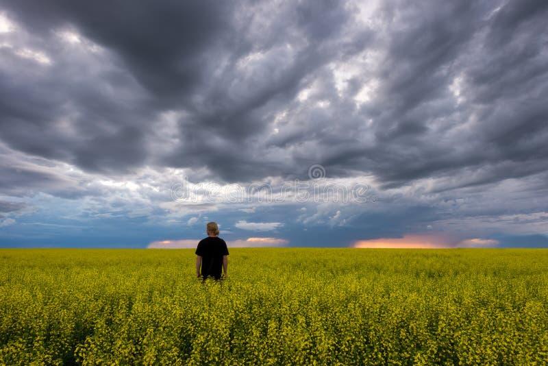 Απομονωμένος τύπος που στέκεται στον ευρύ ανοικτό αγροτικό τομέα κατά τη διάρκεια της θύελλας στοκ φωτογραφία με δικαίωμα ελεύθερης χρήσης