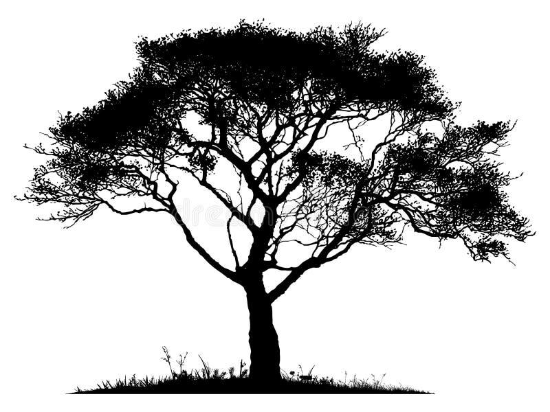απομονωμένο δέντρο σκιαγραφιών απεικόνιση αποθεμάτων