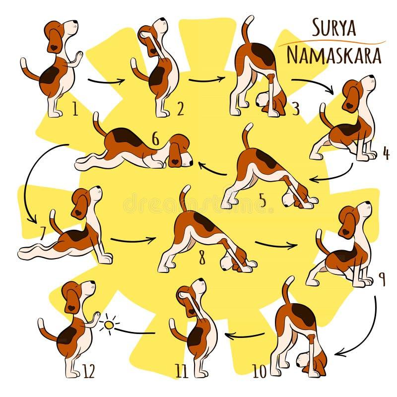 Απομονωμένο αστείο σκυλί κινούμενων σχεδίων που κάνει τη θέση γιόγκας Surya Namaskara απεικόνιση αποθεμάτων