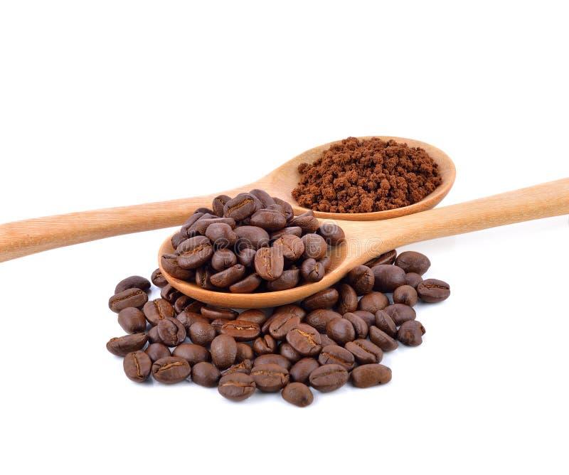 απομονωμένο βλασταημένο λευκό στούντιο φασολιών ανασκόπησης καφές στοκ φωτογραφίες με δικαίωμα ελεύθερης χρήσης
