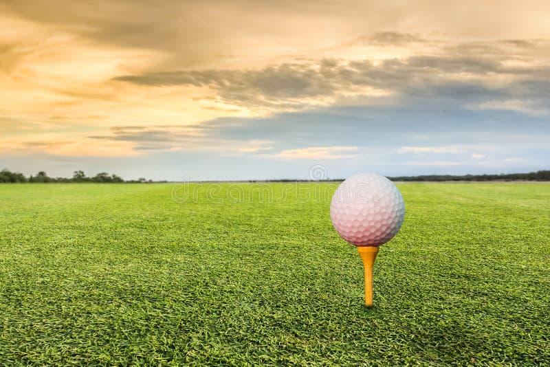 απομονωμένο γράμμα Τ μονοπατιών γκολφ ψαλιδίσματος σφαιρών εικόνα στοκ εικόνες με δικαίωμα ελεύθερης χρήσης