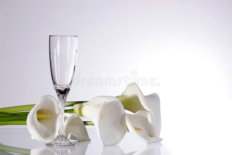 απομονωμένο γυαλί καλυ&mu στοκ φωτογραφία με δικαίωμα ελεύθερης χρήσης