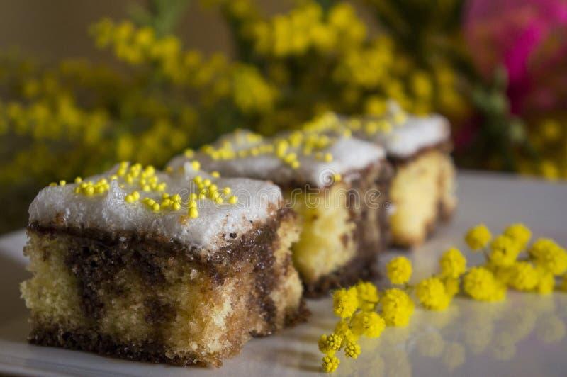 απομονωμένο λευκό σφουγγαριών ανασκόπησης κέικ στοκ φωτογραφίες