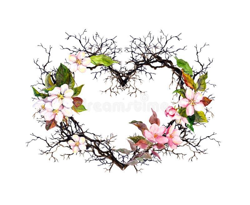 απομονωμένο καρδιά λευκό ντοματών μορφής Κλάδοι, άνθος μήλων, λουλούδια sakura Floral στεφάνι Watercolor για το γάμο, κάρτα άνοιξ απεικόνιση αποθεμάτων