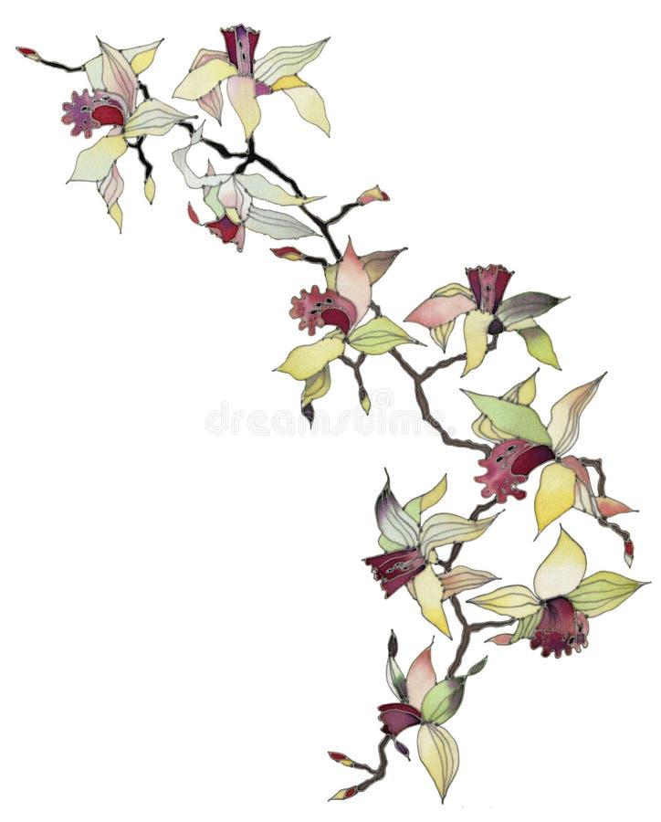 απομονωμένο κλάδος orchid ελεύθερη απεικόνιση δικαιώματος