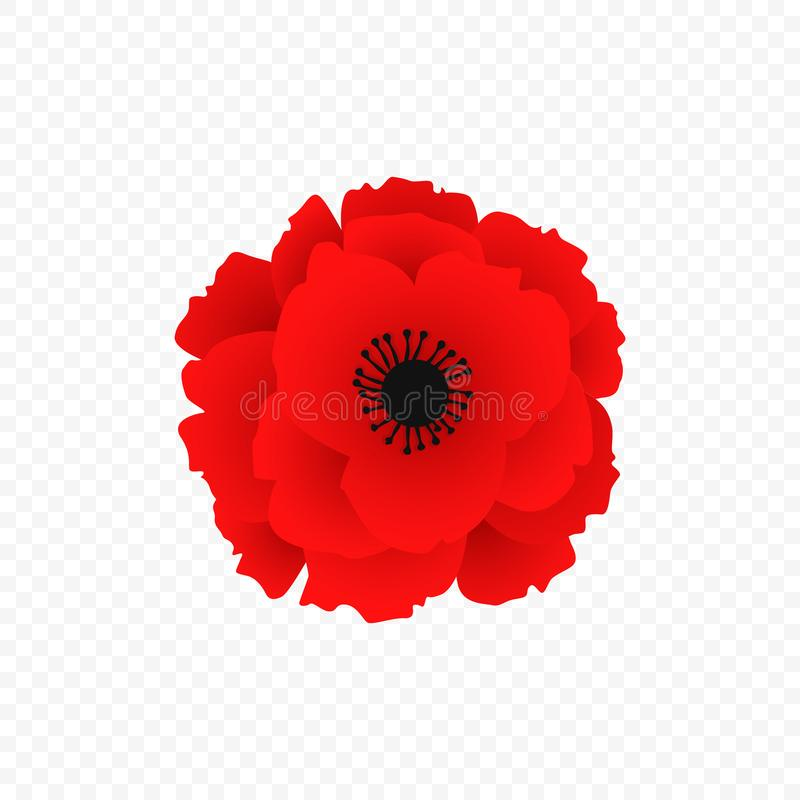 Απομονωμένο κόκκινο εικονίδιο παπαρουνών Σύμβολο του παγκόσμιου πολέμου στο σύγχρονο ύφος Διάνυσμα για το floral σχέδιο φθινοπώρο διανυσματική απεικόνιση