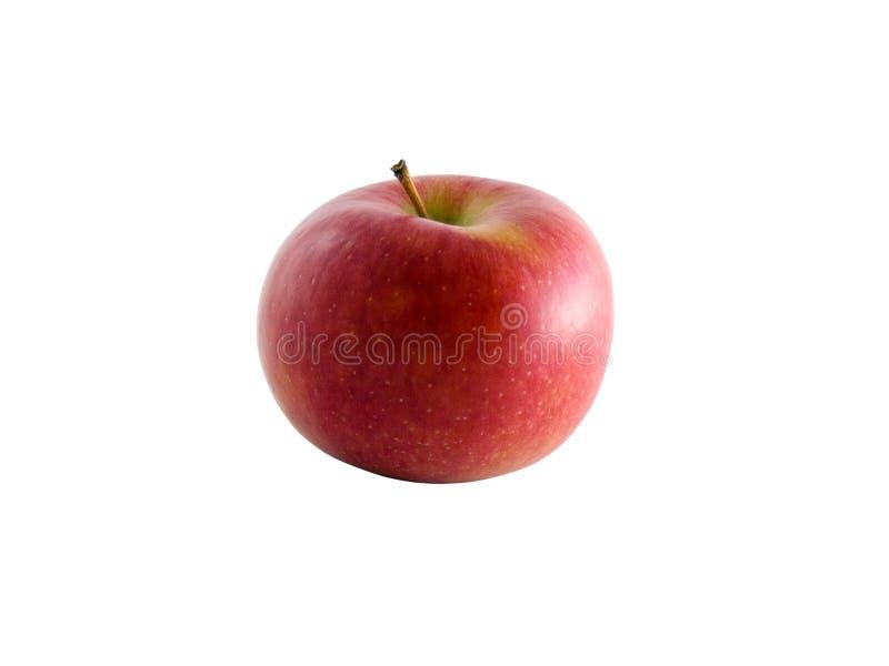 απομονωμένο μονοπάτι μήλων braeburn ψαλίδισμα στοκ φωτογραφίες
