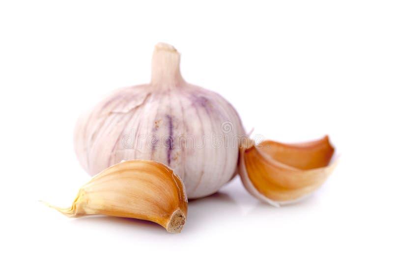 Απομονωμένο σκόρδο Ακατέργαστο σκόρδο με τα τμήματα που απομονώνονται στην άσπρη πλάτη στοκ φωτογραφία