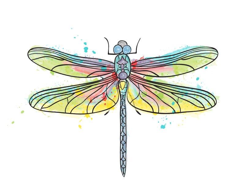 Απομονωμένο σχέδιο watercolor λιβελλουλών ελεύθερη απεικόνιση δικαιώματος