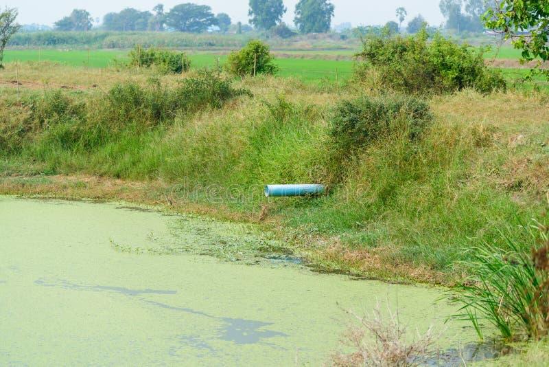 Αποξετεύσεις PVC στο κανάλι, τα λύματα και το νερό άρδευσης στοκ φωτογραφία