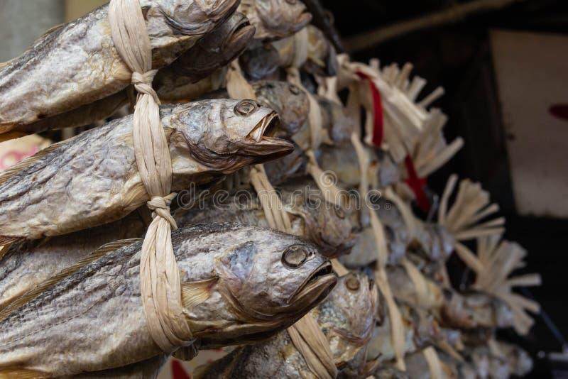 Αποξηραμένα και αλατισμένα ψάρια στοκ εικόνα