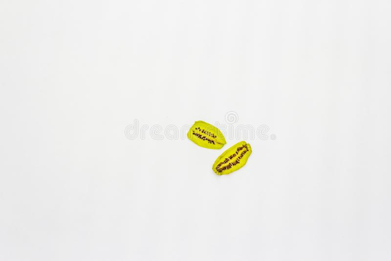 Αποξηραμένα τεμάχια ακτινίου σε λευκό φόντο στοκ εικόνες