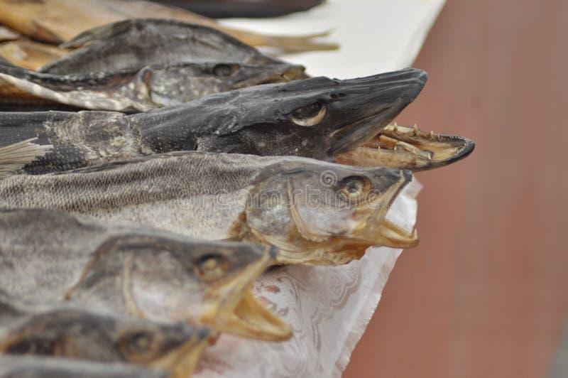 Αποξηραμένα ψάρια στην αγορά Λιχουδιά, λίμνες Ουκρανία πρόχειρων φαγητών στοκ εικόνα