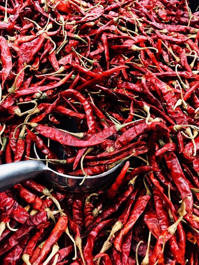 Αποξηραμένες κόκκινες πιπεριές τσίλι για μαγείρεμα ή γαρνιτούρα στοκ εικόνες