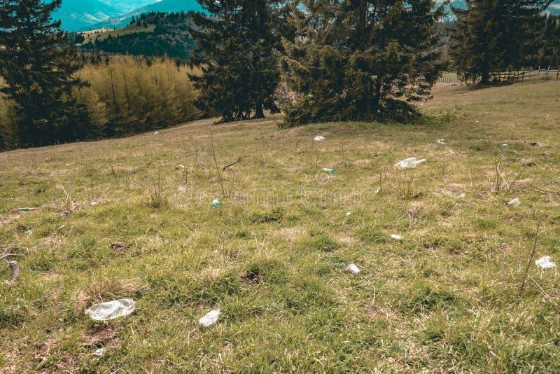 Απορρίμματα στο έδαφος στη φύση στοκ φωτογραφίες