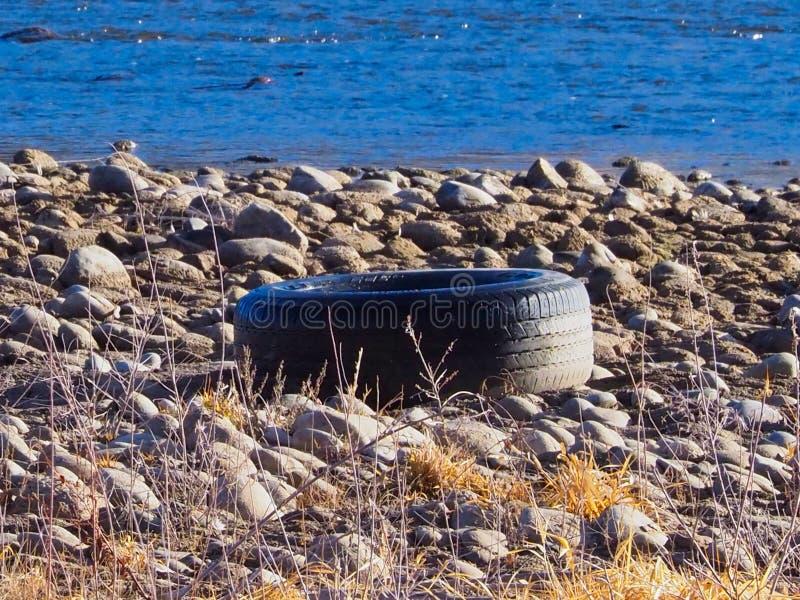 Απορριμμένη ρόδα στον ποταμό του Κολοράντο στοκ εικόνες