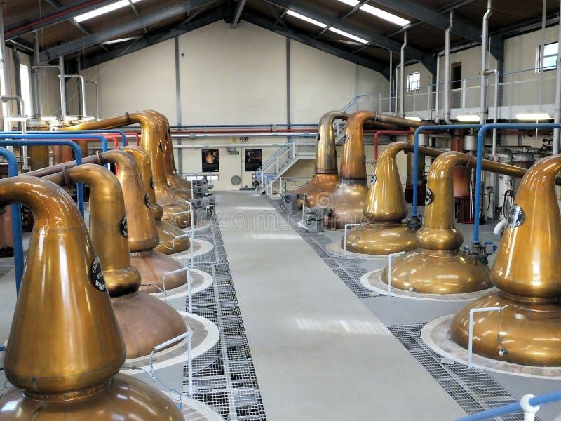 Αποστακτήρες οινοπνευματοποιιών ουίσκυ Glenfiddich στοκ εικόνα με δικαίωμα ελεύθερης χρήσης