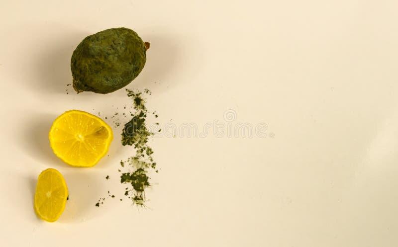Αποσυντεθειμένη κίτρινος moldy και σάπιας κακή τροφίμων απώλεια φρούτων λεμονιών, τ στοκ εικόνες
