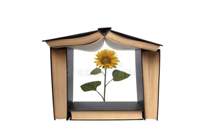 αποτελούμενο σπίτι βιβλί στοκ εικόνες