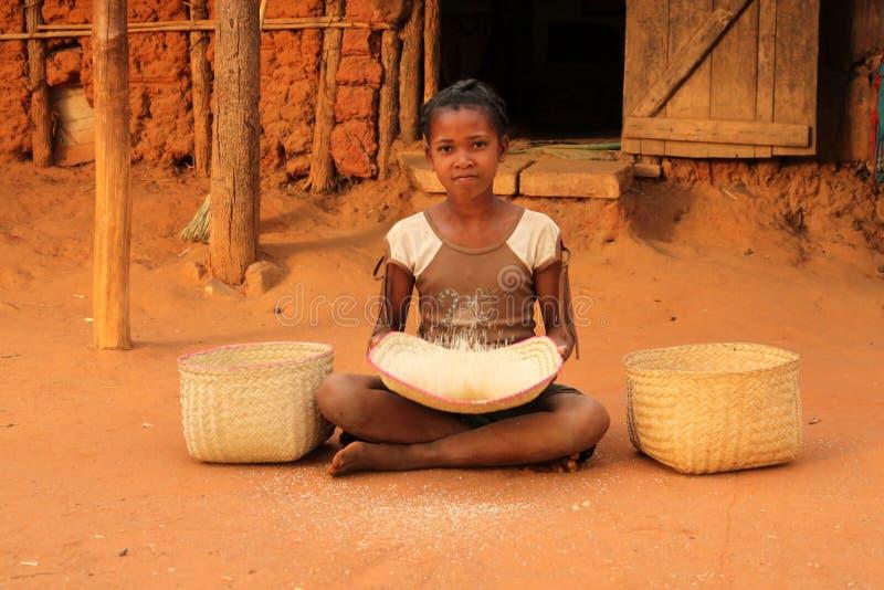 αποφλοιώνοντας ρύζι στοκ φωτογραφία με δικαίωμα ελεύθερης χρήσης
