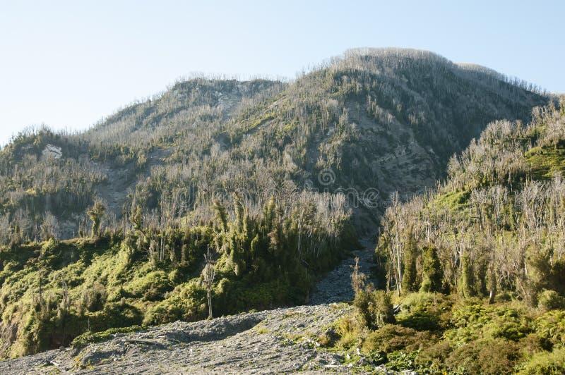 Αποδάσωση ηφαιστείων Chaiten - Χιλή στοκ φωτογραφίες
