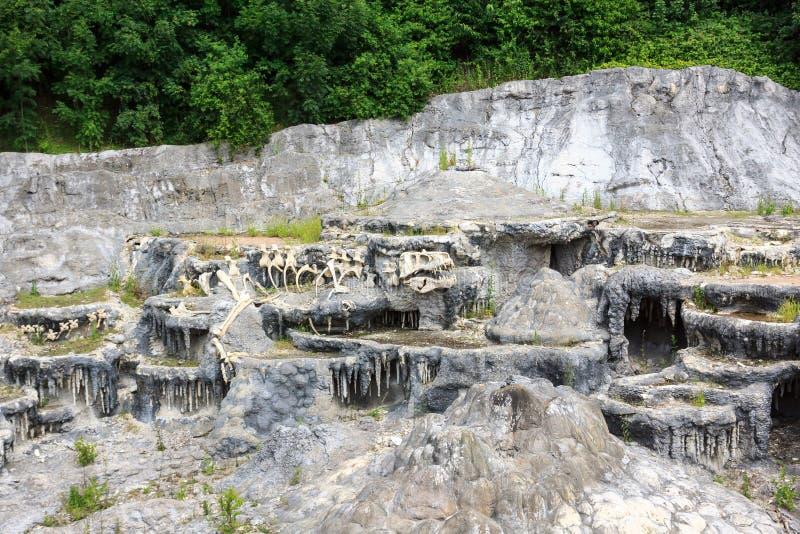 Απολίθωμα δεινοσαύρων στο βράχο στοκ εικόνα