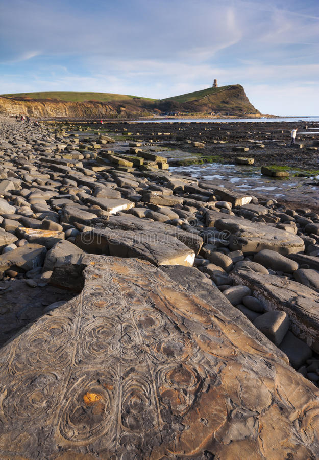 Απολιθωμένο κυνήγι στην ακτή του Dorset στοκ εικόνες με δικαίωμα ελεύθερης χρήσης