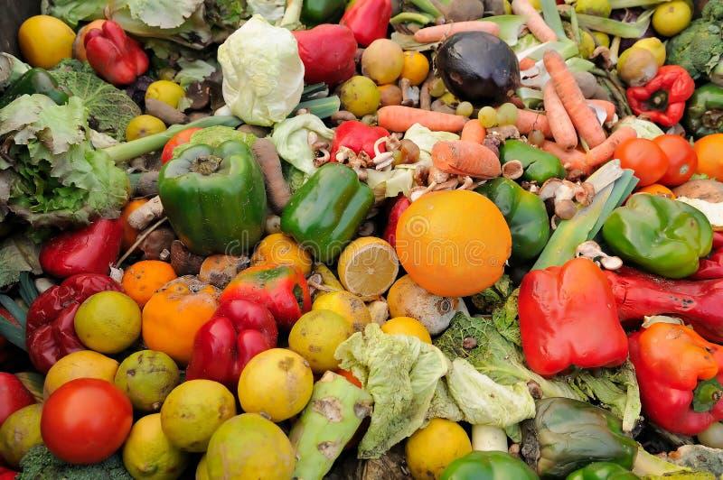 Απόβλητα τροφίμων στοκ φωτογραφία
