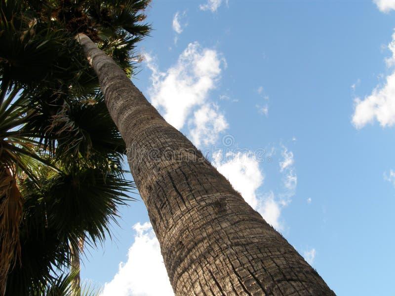 Απόθεμα 23 σύννεφων στοκ φωτογραφία με δικαίωμα ελεύθερης χρήσης