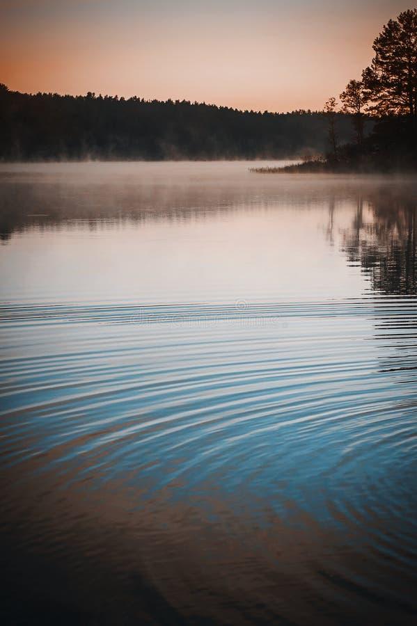 Απόκρυφοι ομίχλη και κύκλοι στην επιφάνεια νερού στοκ εικόνες με δικαίωμα ελεύθερης χρήσης