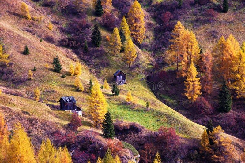Απόκρυφο μαγικό όμορφο, συναρπαστικό φυσικό τοπίο φθινοπώρου στους δολομίτες, νότιο Τύρολο, Άλπεις, Ιταλία Γοητευτικές θέσεις στοκ εικόνες